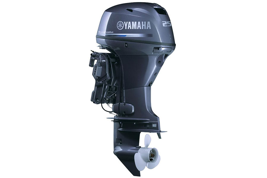 Yamaha FT25